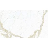 DOLMAGCAL60126-12P - Magnifica Slab - Calcatta Super White