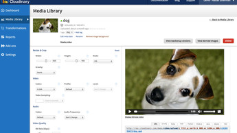 Media_library_video_manipulation