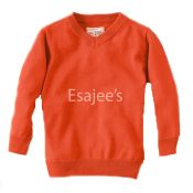 The Children's Place  Boy Long Sleeve V-neck Sweater Desert Orange
