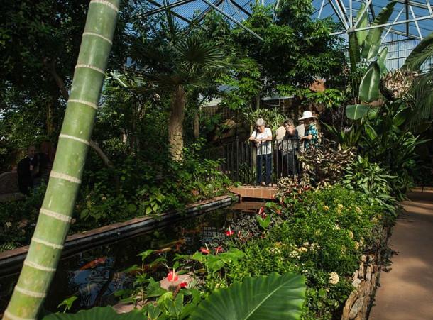 Beaumont Botanical Garden Conservatory