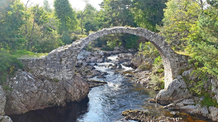 Carrbridge, Scotland (Image uploaded to Reddit by u/ani_svnit).