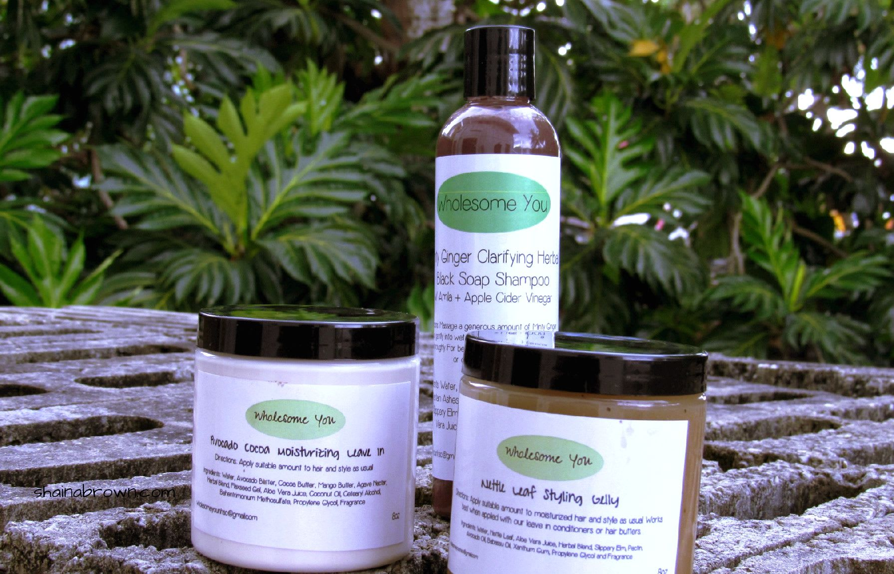 Wholesome You Hair Products - Review