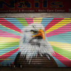 Bald Eagle, Harlem, NY