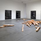 Ester Partegàs, What You Are, The World Is, 2007, installation view, Christopher Grimes, Santa Monica