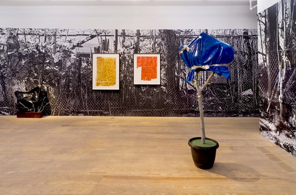 Ester Partegàs, 2010, installation view, Foxy Production, New York view.