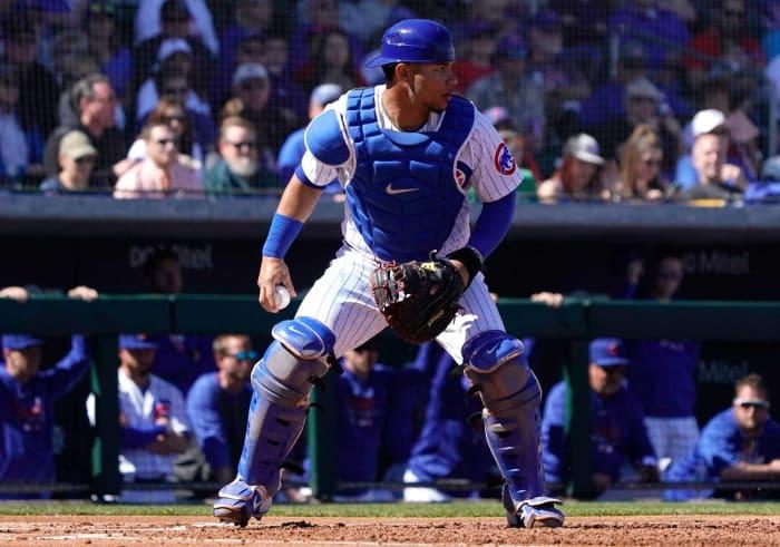 Chicago Cubs: Willson Contreras, C