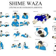 Shime_waza_yktueu