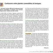 Plantes_domestiques_y71c32