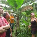 Study Abroad Reviews for Sol Education Abroad - Study Abroad in Heredia, Costa Rica at Universidad Latina de Costa Rica