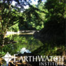 Study Abroad Reviews for Earthwatch: Malaysia - Climate Change & Landscape in Borneo's Rainforests