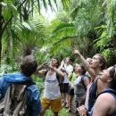 Study Abroad Reviews for SEA Semester: Colonization to Conservation in the Caribbean