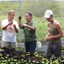 Study Abroad Reviews for ProjectsAbroad: Galapagos - Volunteer and Community Service Programs in Galapagos