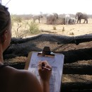 Study Abroad Reviews for ProjectsAbroad: South Africa - Volunteer and Community Service Programs in South Africa