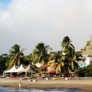 Study Abroad Reviews for UConn: Martinique - UConn Winter in Martinique