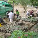 Study Abroad Reviews for GEO: Ecuador - Bioregional Community Development in Ecuador
