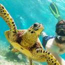 Study Abroad Reviews for International Volunteer HQ - IVHQ:Volunteer in Madagascar