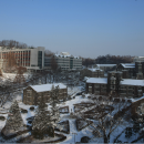 Study Abroad Reviews for Yonsei University: Winter Abroad at Yonsei (WAY)