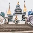 CISabroad (Center for International Studies):  Intern in Thailand Photo