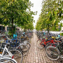 Study Abroad Reviews for CIEE: Summer in Copenhagen