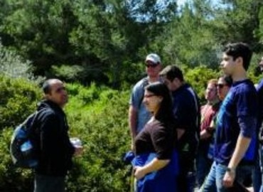 Study Abroad Reviews for MASA: Israel Journey