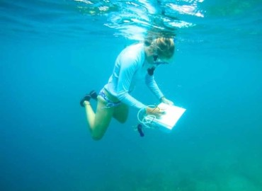 Study Abroad Reviews for SIT Study Abroad: Panama - Tropical Ecology, Marine Ecosystems, and Biodiversity Conservation