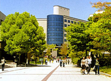 Study Abroad Reviews for Wakayama University: Wakayama - Direct Enrollment & Exchange