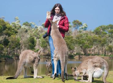 Study Abroad Reviews for World Internships: Australia Internships
