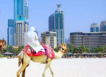 Study Abroad Reviews for KEI Abroad in Ras Al Khaimah, United Arab Emirates