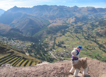 Study Abroad Reviews for Operation Groundswell: Experiential Education & Community Service in Peru