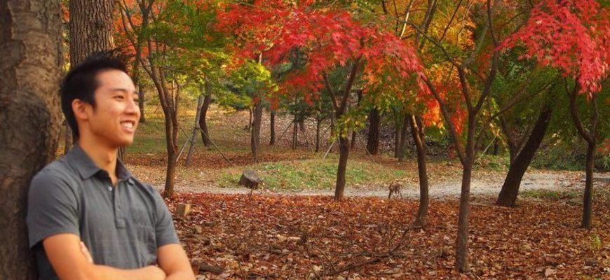 Yonsei study abroad review