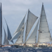 Photo of Sea|mester: S/Y Argo - Global Voyages