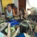 Photo of Agora Language Center: Playa del Carmen - Intensive Spanish Language Courses