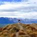 Photo of IFSA: Dunedin - University of Otago