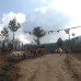 Photo of The School for Field Studies / SFS: Bhutan - Bhutan - Himalayan Studies