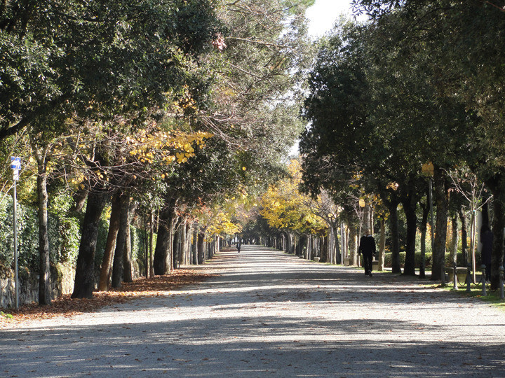UGA Classics Study Abroad in Rome