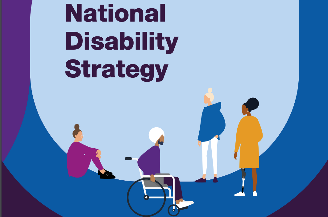 AccessiblePRS Opinion on the Government National Disability Strategy Housing