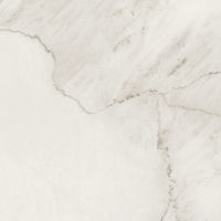 DOLMAGLIN3030-6P - Magnifica Tile - Lincoln Super White