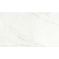 DOLMAGLIN60120FDP - Magnifica Slab - Lincoln Super White