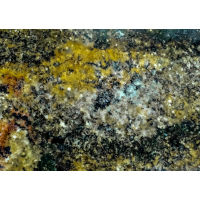 Mascaratus Granite in 2 cm