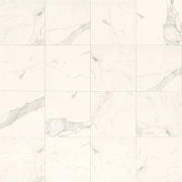 "Classic 12"" x 12"" x 3/8"" Floor and Wall Tile in Statuarietto"