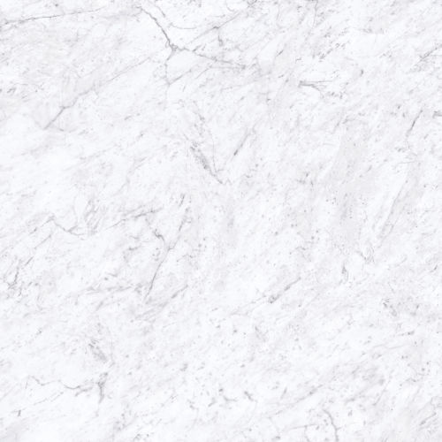 "Magnifica 30"" x 30"" Floor & Wall Tile in Bianco Carrara"