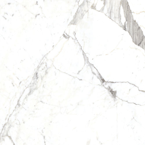 "Magnifica 30"" x 30"" Floor & Wall Tile in Statuarietto"