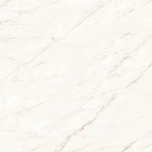 "Magnifica 30"" x 30"" Floor & Wall Tile in Calacatta Oro"
