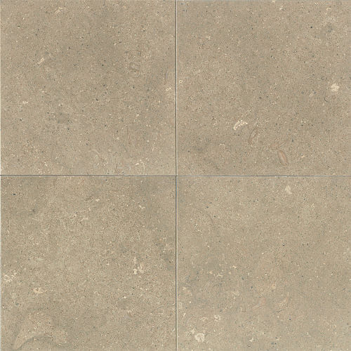 "Sea Grass 24"" x 24"" Floor & Wall Tile"
