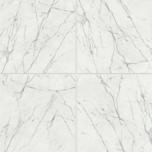 "Statuario 24"" x 24"" Floor & Wall Tile"
