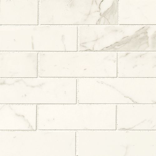 "Classic 2"" x 6"" Floor & Wall Mosaic in Statuarietto"