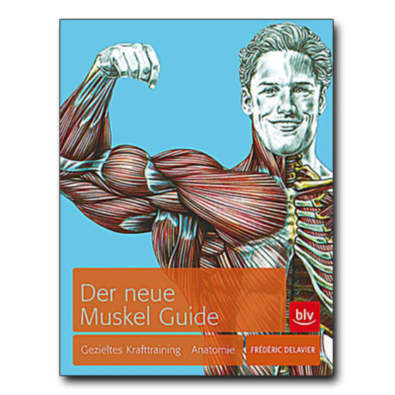 Der neue Muskel Guide ( Männer )