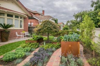Front Garden, shared