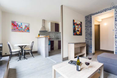 Bright renovated Parisian apartment