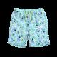 Boys Tropical Print Drawstring Swim Trunk